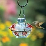 charleston-gardens-pot-de-creme-hummingbird-feeder