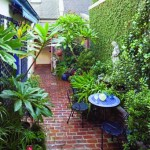 The view from the elevated rear porch takes in the entire courtyard, with its ceramic-topped bistro table and property-line wall covered in fig vine.