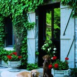 The Ogilvies' canines rest outside the main portion of the house, an ivy-covered stone structure that contains the formal rooms.