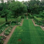 The long axial garden extends from the house and merges into the woods through a small hand gate. Newly planted, the Ulmus parvifolia was chosen because Farrand had used it successfully at Dumbarton Oaks. (Photo: Courtesy Beatrix Farrand Society)