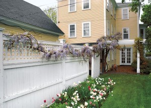 Vines and perennials are seasonal attractions for curb appeal.