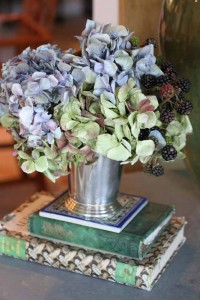 Dried specimens - Pictures of Hydrangeas in a Historic Garden