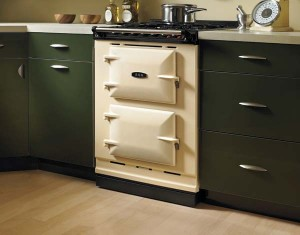 A narrow two-oven model from the new, smaller 'Companion' line by Aga Cookers.