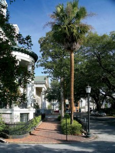 In Savannah, houses, buildings, and lush landscapes of all periods blend uniquely together, as in this view of Chippewa Square.