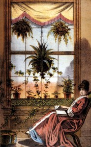 Victorians saw plants as symbols of moral values and emotions, and brought them into the home year-round for inspiration and solace as well as for inexpensive décor.
