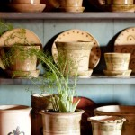 Fennel grows in Wolff's English white-clay pearl-ware.