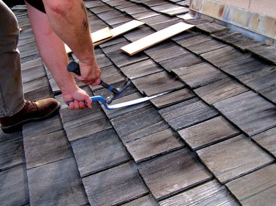 Use a shingle ripper to pull out the damaged shingle.