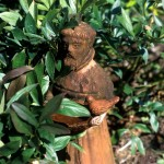 St. Francis in terracotta animates a green bower.