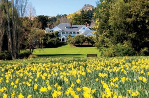 """Owners Hall Cannon and Miles Refo revived Sir Heaton Rhodes' """"Daffodil Day"""" tradition of inviting the public to view the lodge and grounds during peak blooming season."""