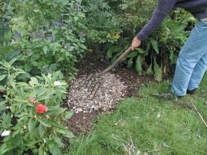 Spreading mulches in a uniform thickness around plants, no matter what you grow, delivers maximum benefits.