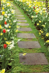 Tulips and daffodils create colorful borders for walkways.