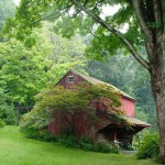 Guests visiting the garden check in underneath the canopy of this picturesque old barn.