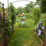 In the food garden, clematis climb salvaged iron gates that Diane bought locally. Simple arches are set between beds.