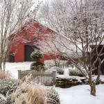 Thumbnail image for A Winter's Tale at Juniper Hill Farm
